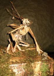 Primitive Creature made from flotsam