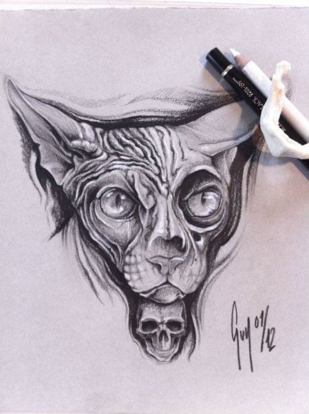 "Pencil Drawing ""Sphinx Cat"""