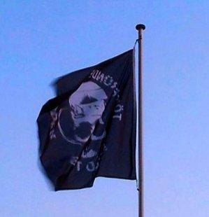 Flag with Wild TOB Logo