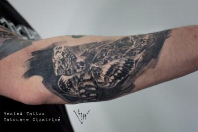Tatouage cicatrisé Acherontias | Guy Labo-O-Kult