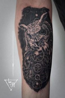 Hibou - Eagle Owl - Uhu   Guy Labo-O-Kult