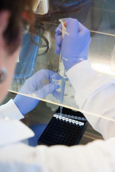 Préparatifs PCR