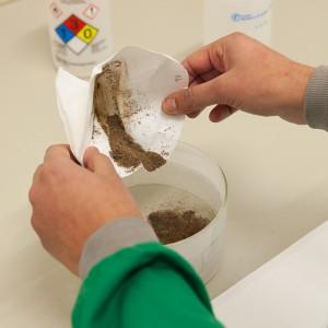 Phytopathologie : préparation de sols pour la recherche de pathogènes