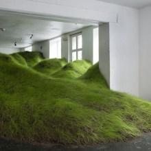 Une colline verdoyante à l'intérieur