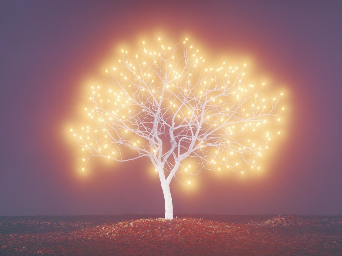 lee jeong lok arbre lumiere 06 la