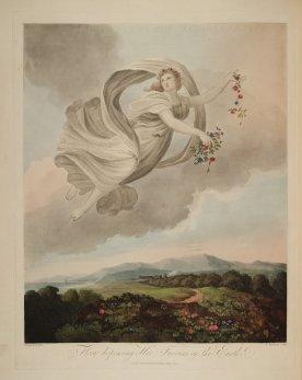 temple-fleur-divers-Robert-Thornton-02