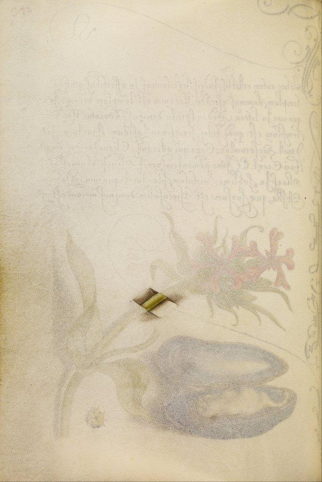 Mira-calligraphiae-monumenta-22