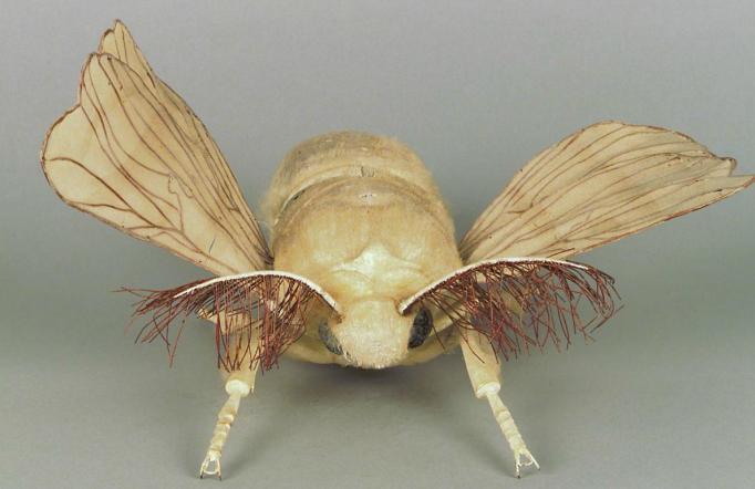 modele-anatomique-docteur-Auzoux-1820-23