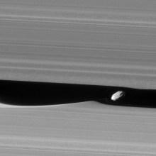 Daphnis surfe sur les vagues de Saturne