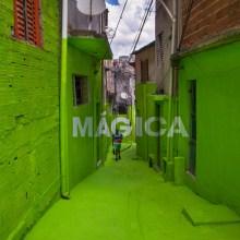 Ils peignent la magie et la poésie dans les rues de São Paulo