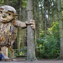 Les géants de bois au coeur d'une forêt danoise