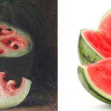 L'évolution de la pastèque montrée par les natures mortes