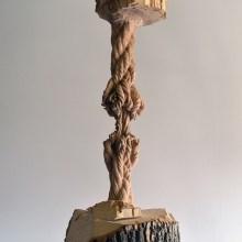 Le tronc grignoté jusqu'à la corde