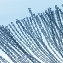 Les tracés stroboscopiques du mouvement des oiseaux dans le ciel