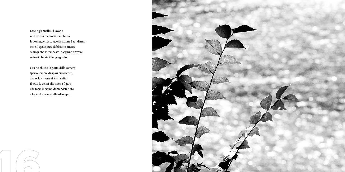 Cactus - Panico/Anatrella 5