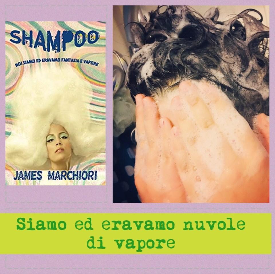 Shampoo: siamo ed eravamo nuvole di vapore Book Cover