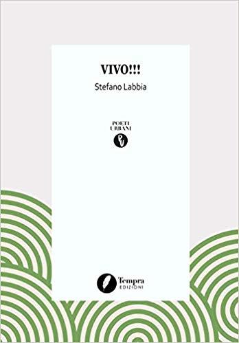 VIVO Book Cover