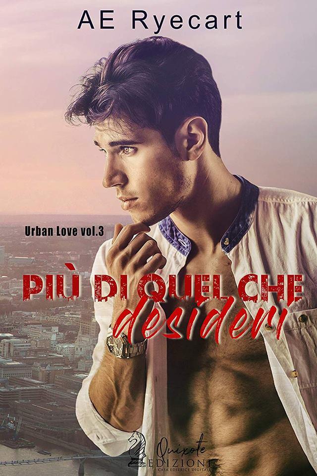 PIU' DI QUEL CHE DESIDERI Book Cover