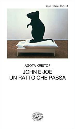 """""""John e Joe. Un ratto che passa"""" Book Cover"""