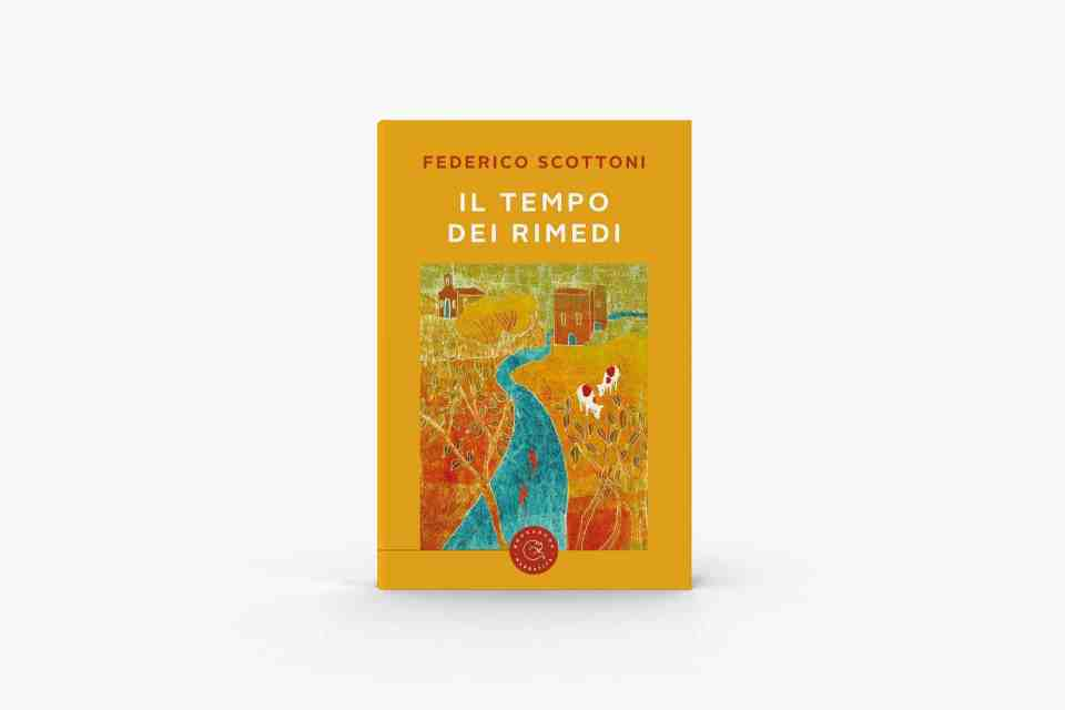 Il tempo dei rimedi Book Cover