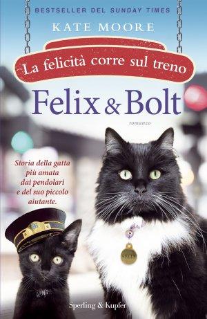 Felix & Bolt Book Cover