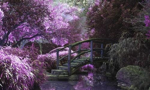 colori rilassanti per il benessere