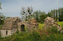 Ruine (1 von 1)-w1280