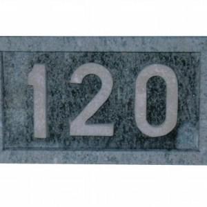 Número 120 Tallado