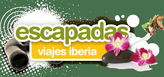 cabecera.png