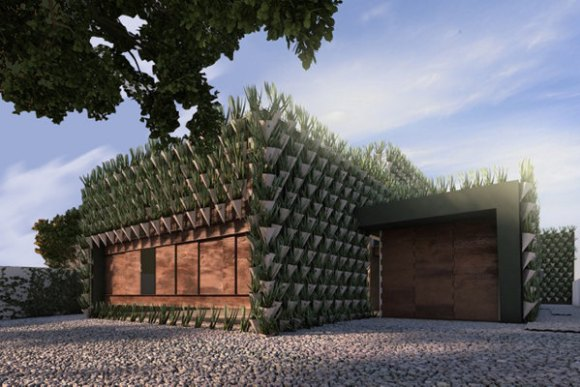 9.000 plantas recubren Casa Firma