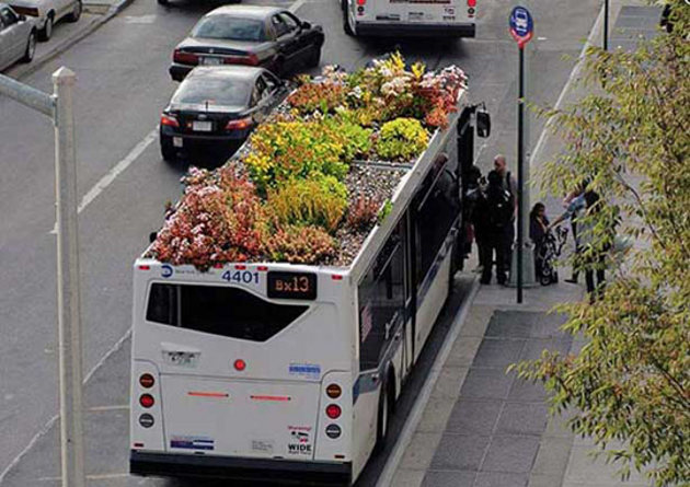 Jardines techo autobuses Nueva York