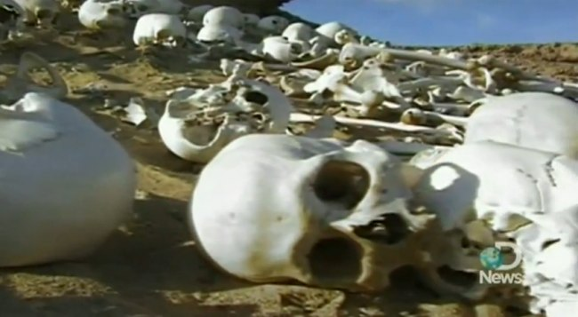 Hallazgo polémico: el ejército perdido de Cambises