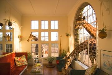 Giraffe Manor alojarse entre jirafas