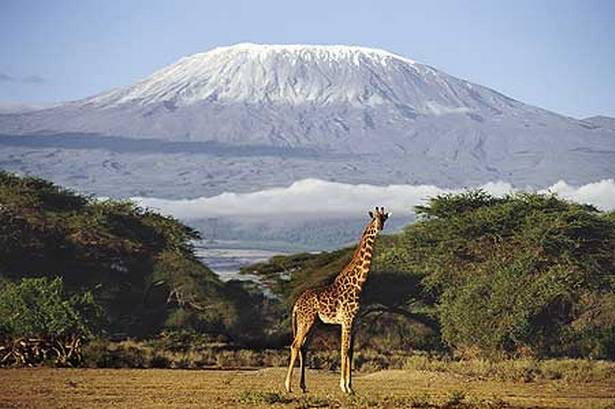 La ascensión al Kilimanjaro