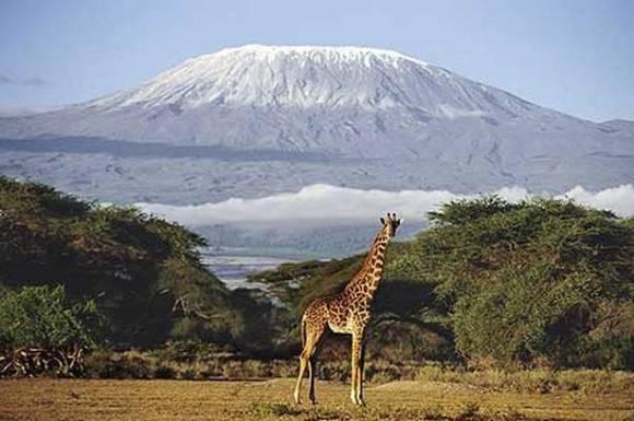 Ascensión Kilimanjaro