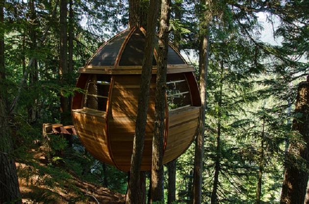La casa del árbol escondida en los bosques de Canadá