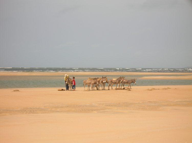 Lamu, un paraíso ignoto