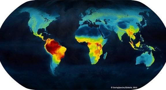 Un mapa de calor de la biodiversidad mundial 1