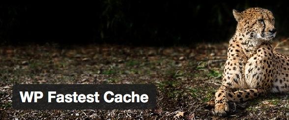 WP Fastest Cache, el plugin de cache más sencillo y efectivo