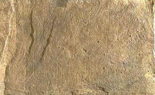 Un misterioso código vikingo descifrado