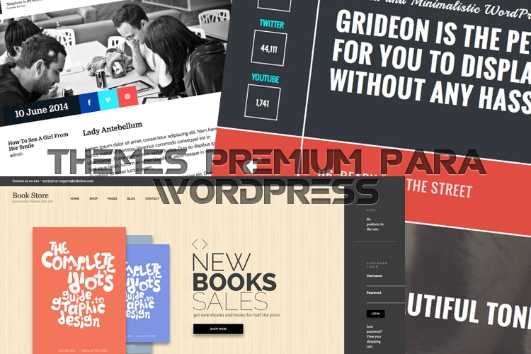 Los mejores themes premium para WordPress – Junio 2014