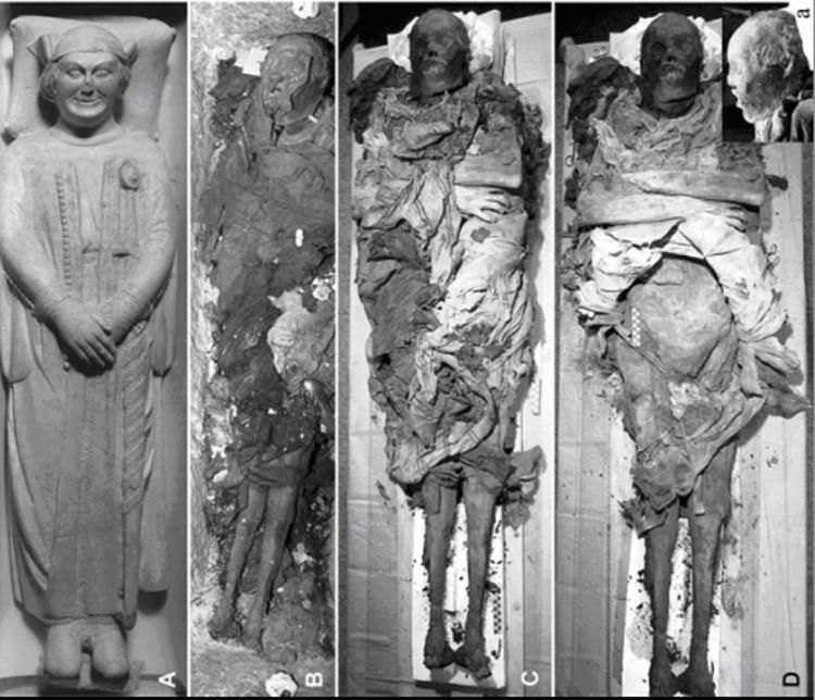 Heces momificadas desvelan un asesinato histórico 1