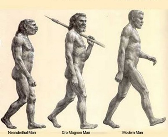Se aliaron sapiens lobos contra neandertales 3