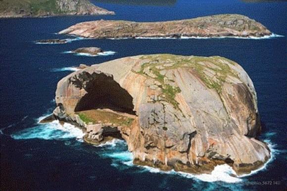 Cleft Island inaudita Isla Calavera 3