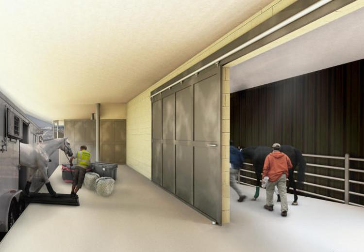 Aeropuerto JFK Nueva york abrira terminal exclusiva mascotas 2