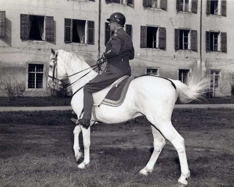 Operacion Cowboy cuando Patton salvo medio millar caballos lipizanos durante II Guerra Mundial 1