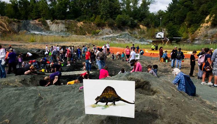 Yacimiento fosiles dinosaurios fallecidos meteorito Gran Extincion 2