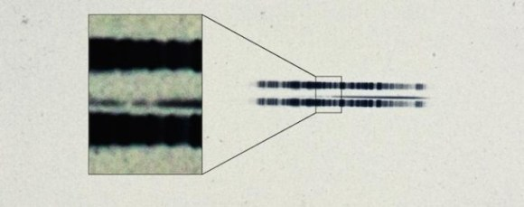 Descubren sistema planetario alrededor enana blanca en foto 1917