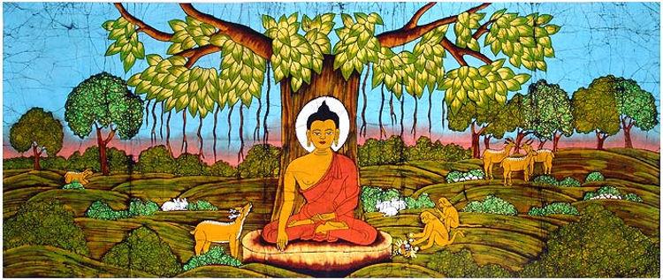 arbol-bodhi-higuera-bajo-buda-creo-nueva-religion