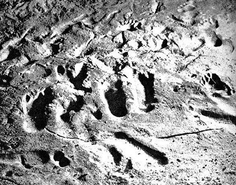 Huellas de niños en Tuc d'Audoubert. Foto Bègouën.